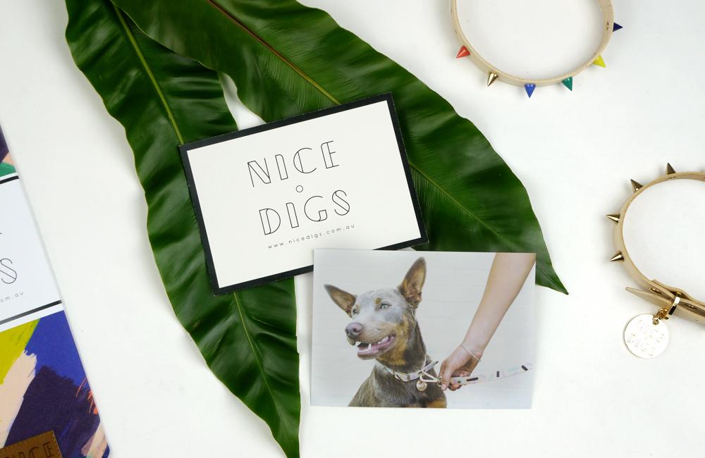 Nice Digs from Australia / オーストラリア発のドッグブランド「Nice Digs」日本初上陸しますよ!