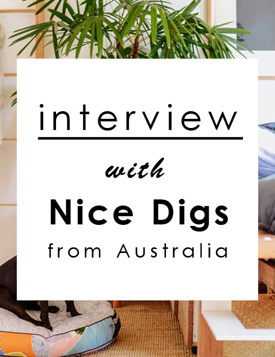 Interview with Nice Digs / インタビュー