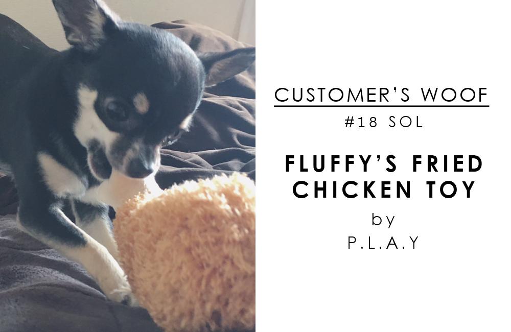 お客さまの声「Customers woof」#18 - チワワのソルちゃんとフライドチキン