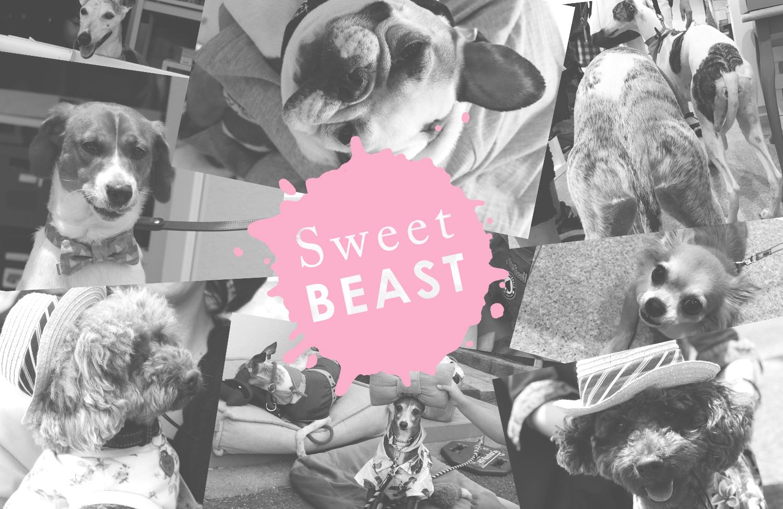 『Sweet BEAST』開催されました!