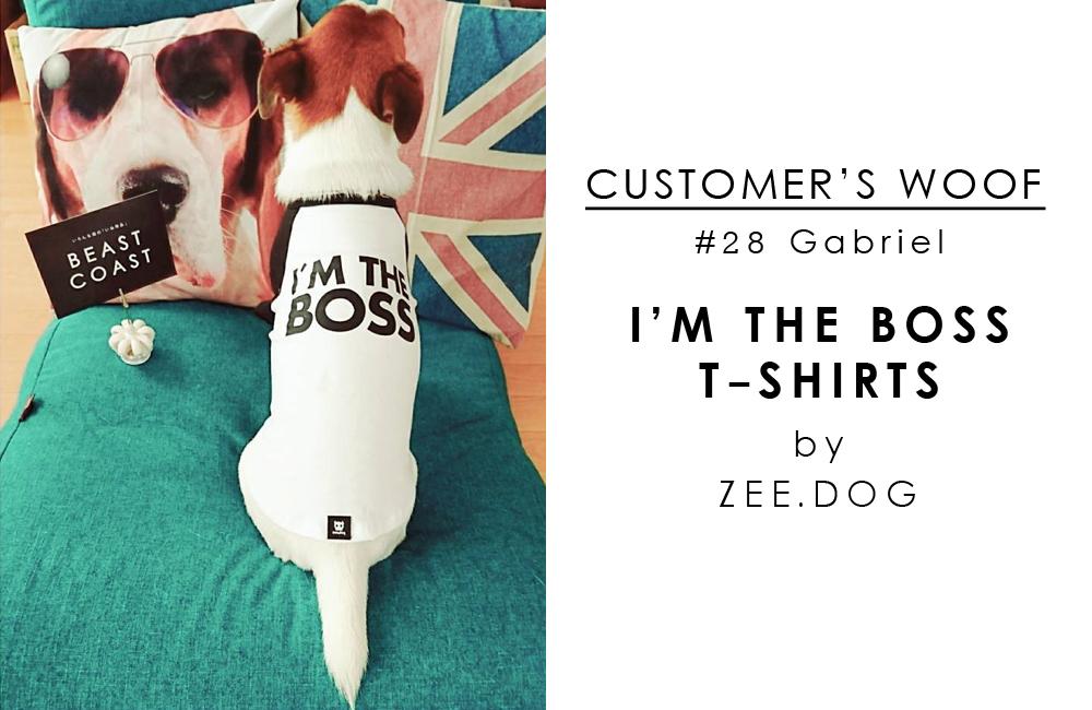 お客さまの声「Customer's woof」#28 - ジャックラッセルのガブリエルくんとZee.dogのボスTシャツ