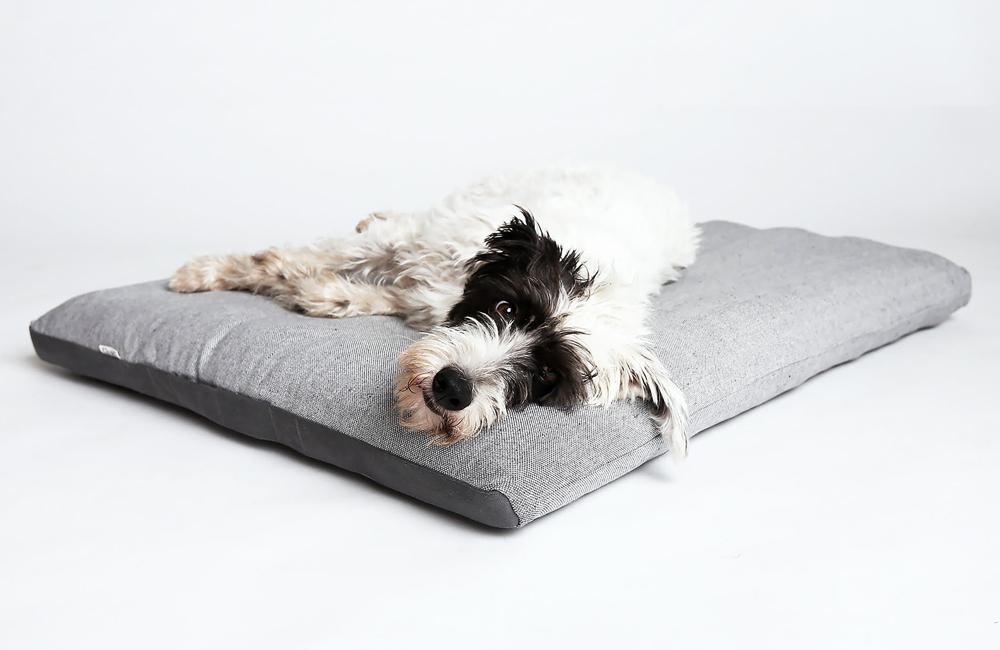 ベルリン生まれのドッグブランド「Cloud7」の愛犬用ベッド