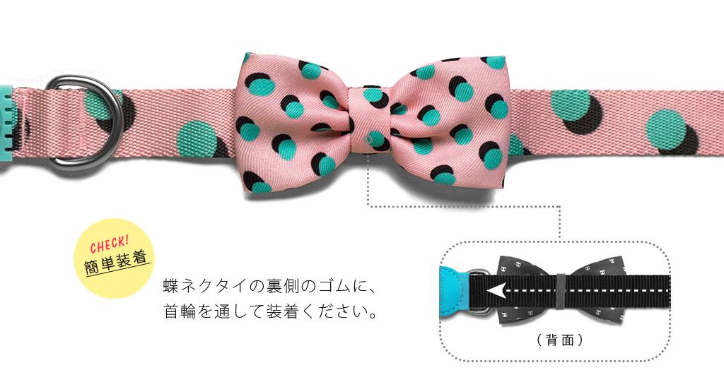 Zee.dog(ジードッグ)の新商品。蝶ネクタイは首輪に通すだけ、とっても簡単装着!
