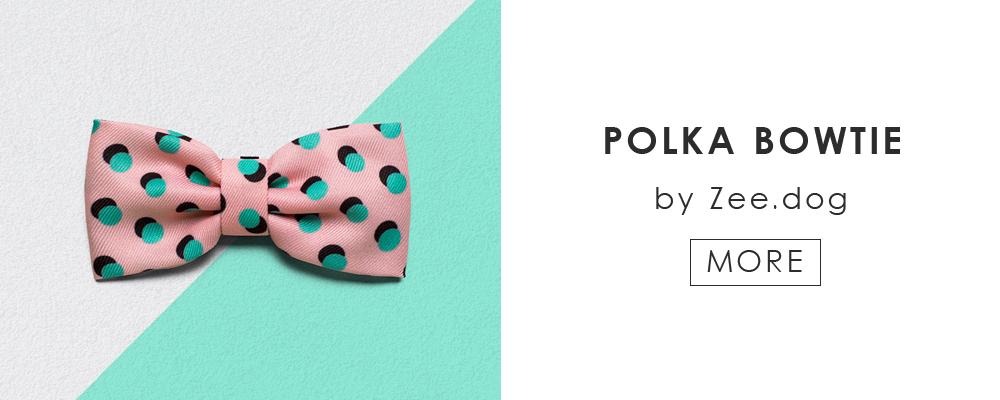 ペアでご利用いただける「Polka Leash by Zee.dog」はこちら