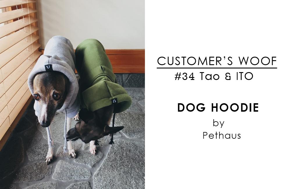 [ Customer's woof(お客様の声)] イタグレチーム、タオ&イト / Pethaus