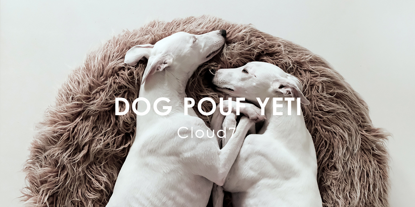 ドイツ生まれの愛犬用ベッド「DOG POUF YETI」に眠るホワイトウィペット