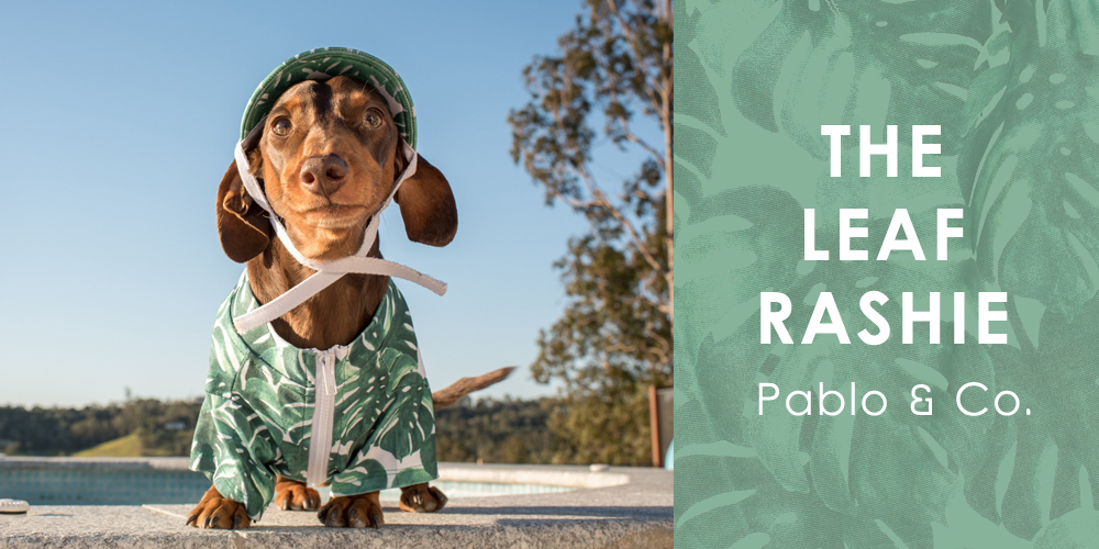 オーストラリア生まれのドッグブランド「Pablo&Co.(パブロ&コー)」から、グリーンモンステラ柄の愛犬用ラッシャガードを入荷しました。