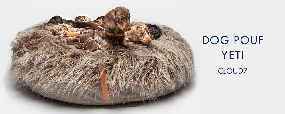 ドイツ生まれの愛犬用ベッド「DOG POUF YETI」に眠るダックスフントの子犬