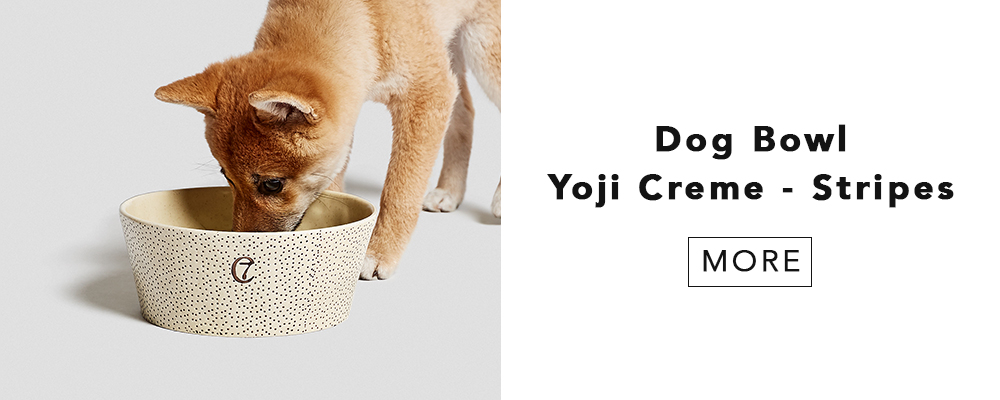 YOJIライン Dog bowl yoji creme dots | Cloud7