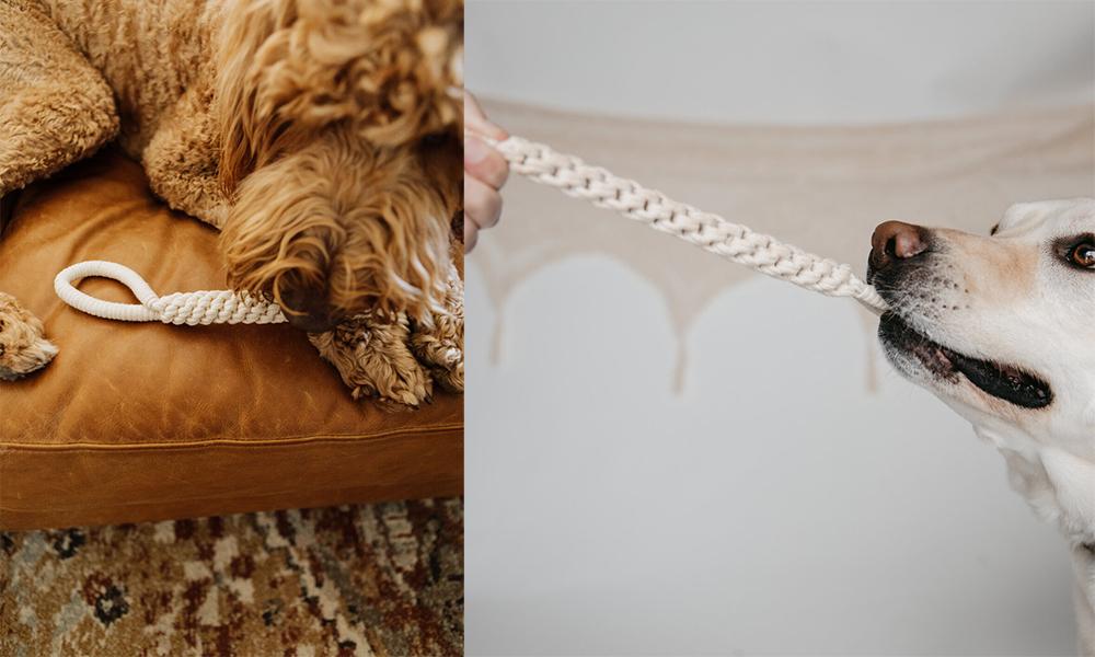 天然マクラメ編みの愛犬用おもちゃ
