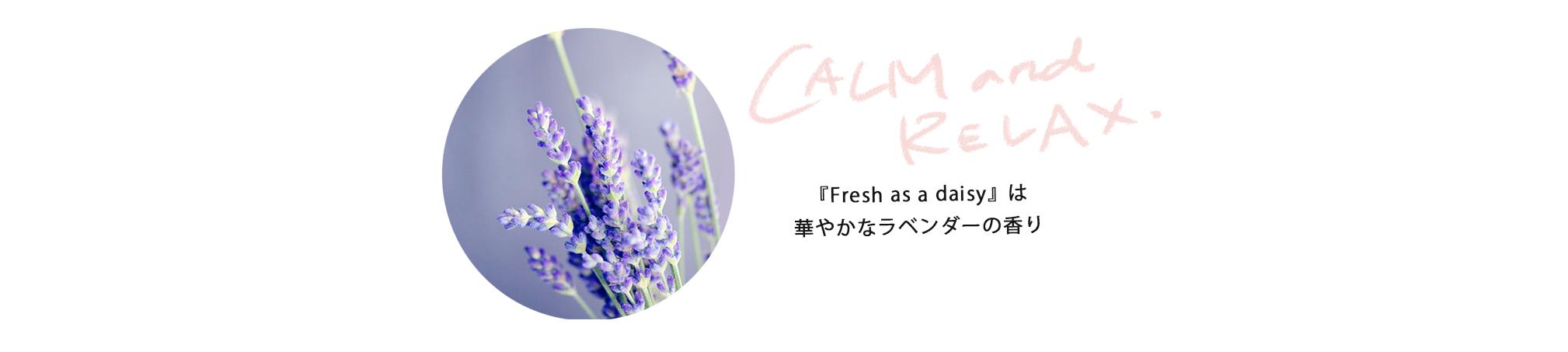 「フレッシュアズデイジー コンディショナー」は、ニュージーランド原産のクメラホウとハラケケを含む天然成分が毛のコンディションを整え、アルガンオイルとアロエベラが毛に艶を与え柔らかくしてくれます。カモミールの香りをベースに、ムスク&シトラス系のエッセンシャルオイルを配合。<br /> 心地良いバスタイムをお過ごしくださね♪|Kin(キン)