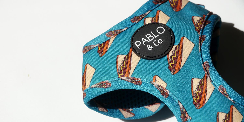 やわらかいライクラ製素材の愛犬用ハーネス(Pablo & Co.)