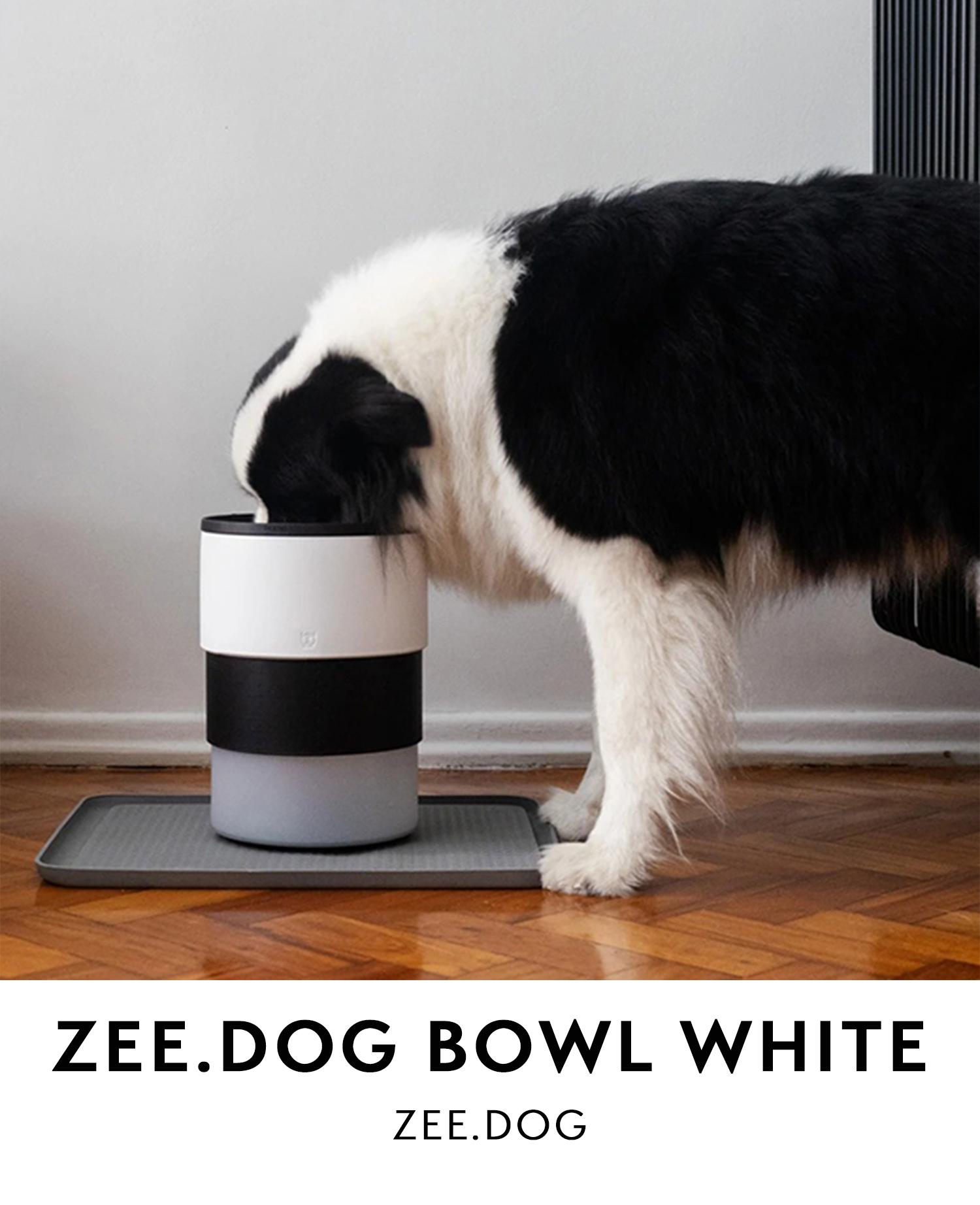 Zee.dog   Dog bowl white