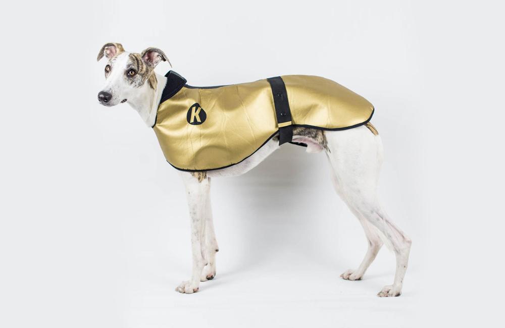 ロンドン発のドッグブランド「DOGSNUG」のゴールド/シルバーコート