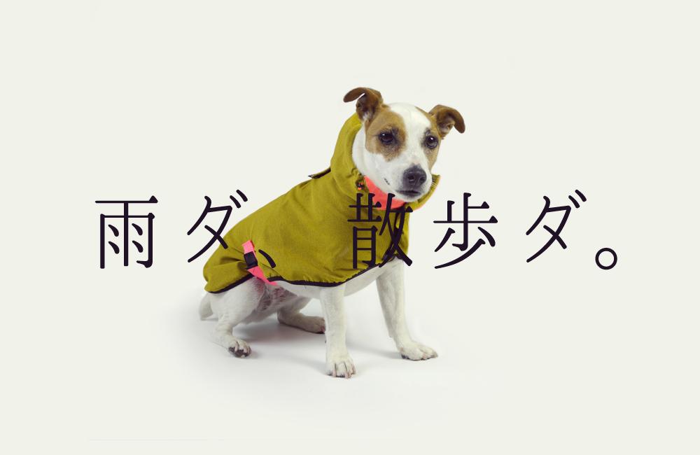 雨ダ、散歩ダ。日本限定発売のレインコート。新発売。
