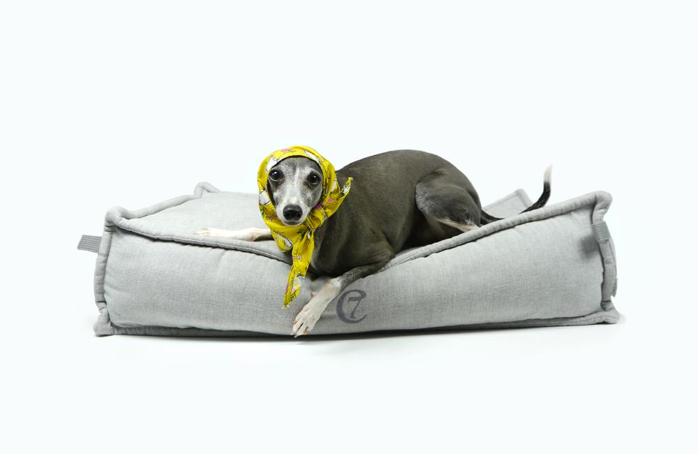 ドイツ発のドッグブランド「Cloud7」のベッドを再入荷いたしました。