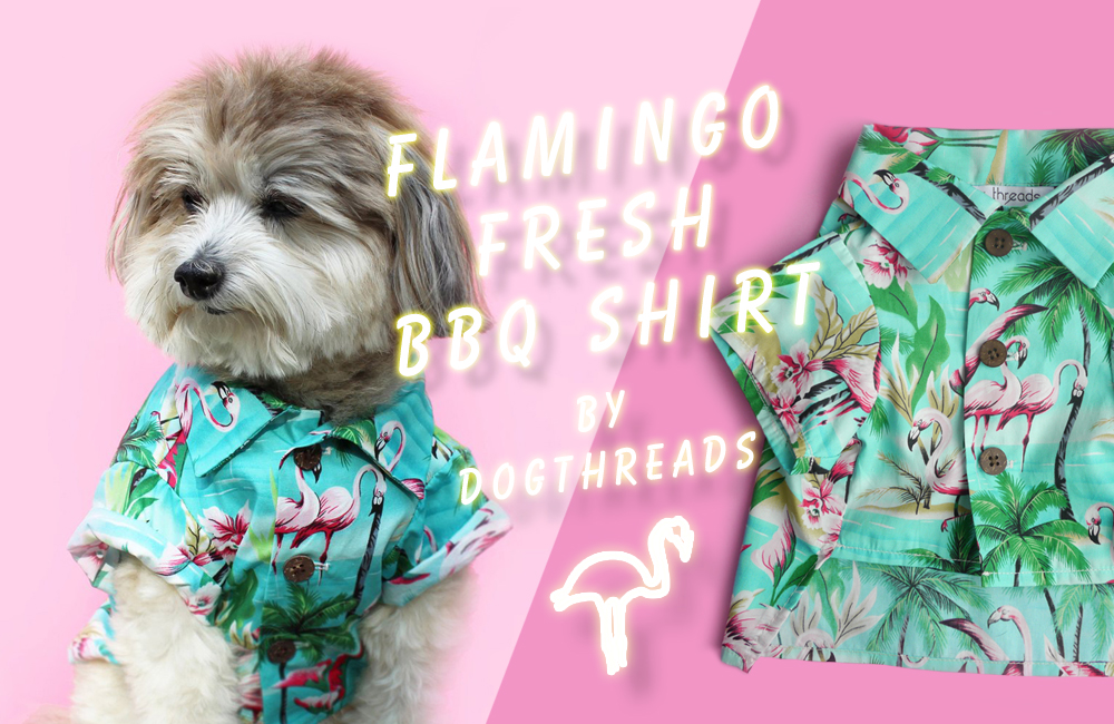 USA発ドッグアパレル「dog threads」のフラミンゴアロハシャツを入荷しました。