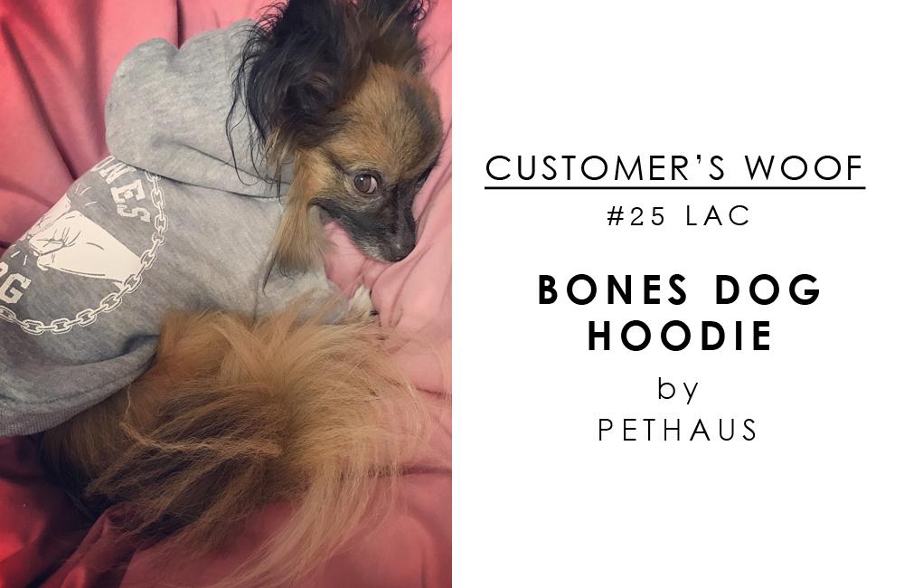 お客さまの声「Customer's woof #24」- チワワとパピヨンのミックス lacちゃんとPETHAUSとPLAYのおもちゃ達