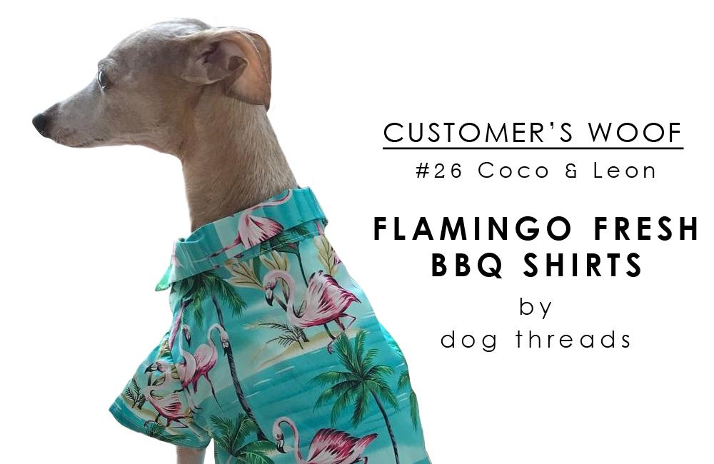 お客さまの声「Customer's woof #26」- イタグレのこっちゃんと、チャイクレのレオンちゃん | BEAST COATS