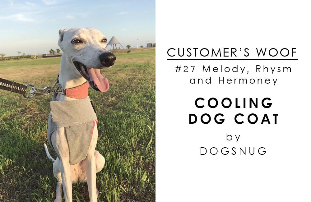 お客さまの声「Customer's woof #27」- ウィペット3娘とDogsnug Cooling dog coat