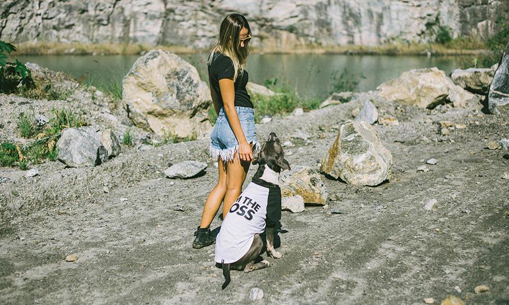 NY発のドッグブランド、Zee.dogの犬用Tシャツ「I'm the boss」