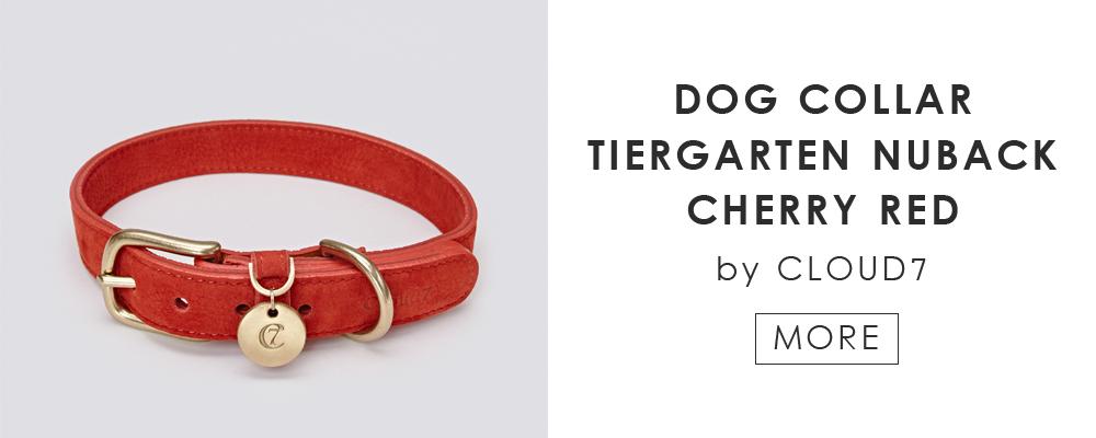 ドイツ生まれのドッグブランド「Cloud7」の愛犬用カラー|DOG COLLAR TIERGARTEN NUBACK CHERRY RED by Cloud7
