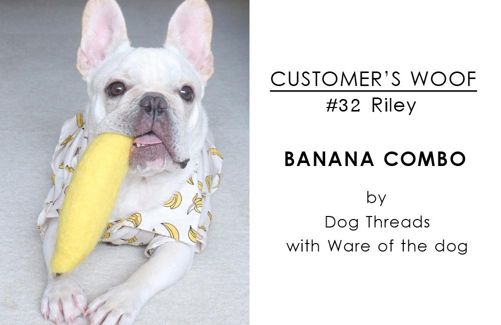 [ Customer's woof(お客様の声)] フレブルのライリーくん