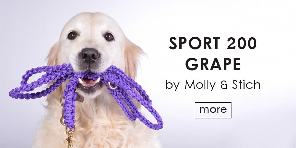 オーストリア発ドッグブランド「Molly & Stitch(モリーアンドスティッチ)」の発色豊かなロープリード