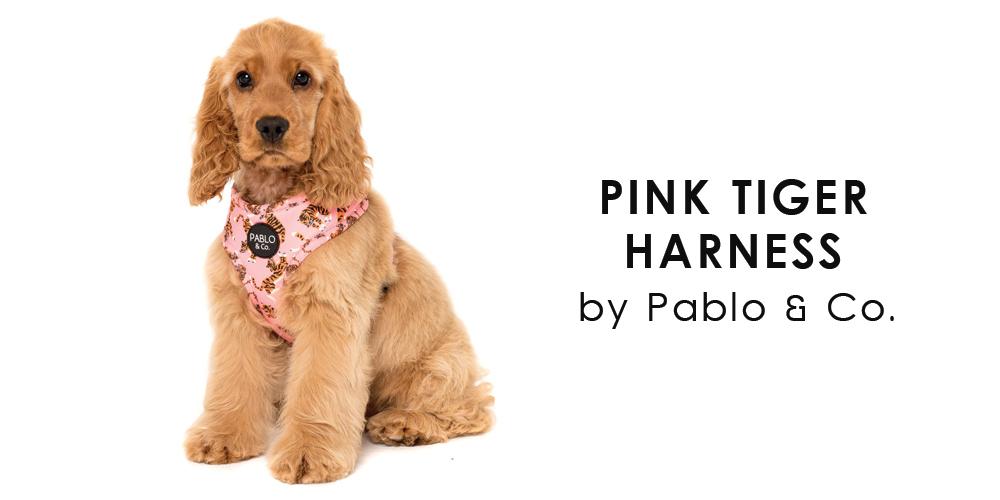 オーストラリア生まれのドッグブランド「Pablo&Co.(パブロ&コー)」から、ピンク&タイガー模様の愛犬用ソフトハーネスを入荷しました。