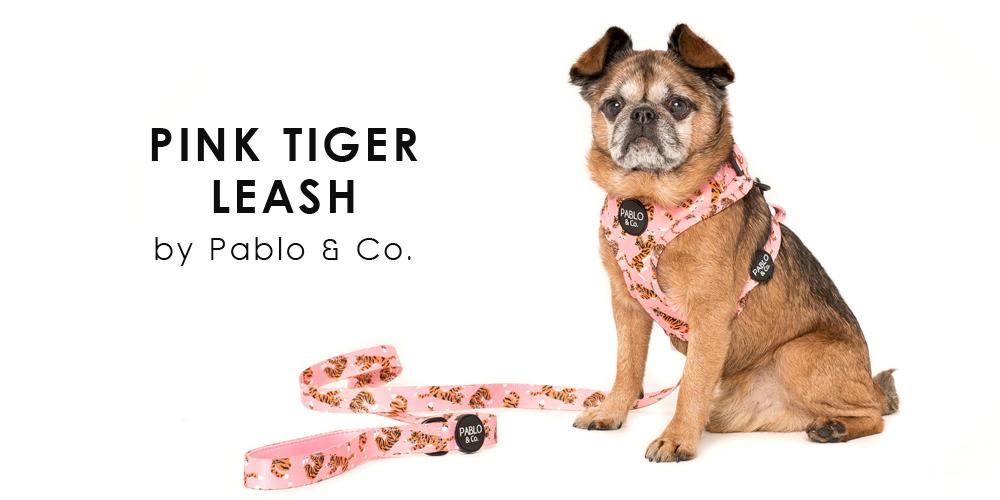 オーストラリア発のドッグブランド「Pablo & Co.(パブロアンドコー)」からピンク&トラ模様のリードとハーネスを入荷