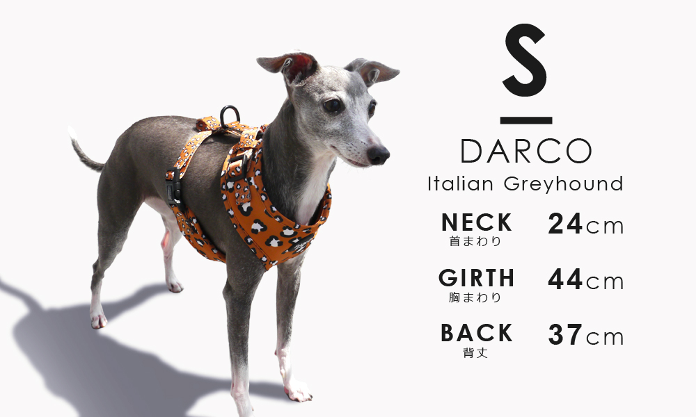 店長ダーコが着用しているのは「S」サイズです