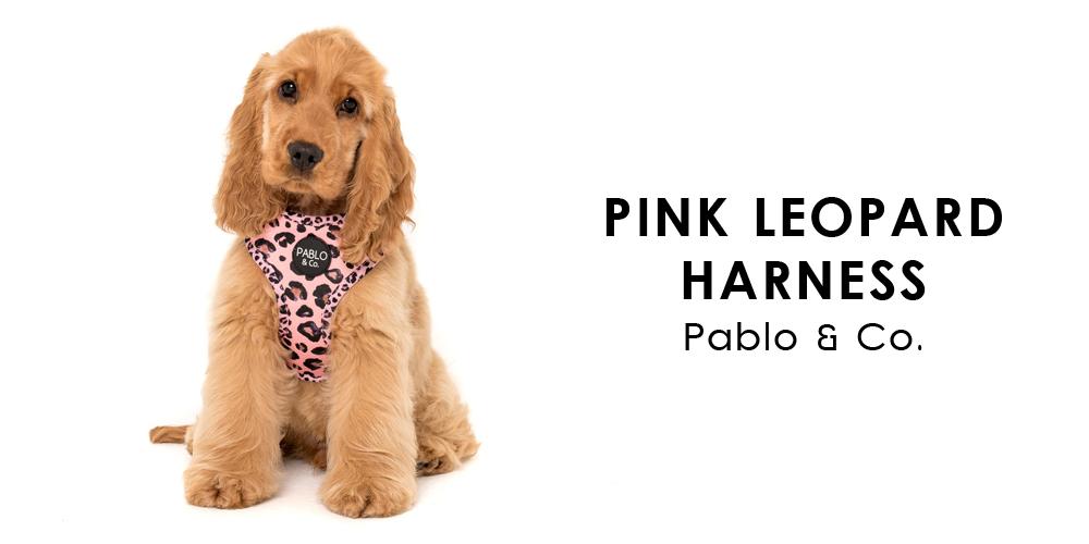 オーストラリア生まれのドッグブランド「Pablo&Co.(パブロ&コー)」から、ピンクヒョウ柄の愛犬用ソフトハーネスを入荷しました。