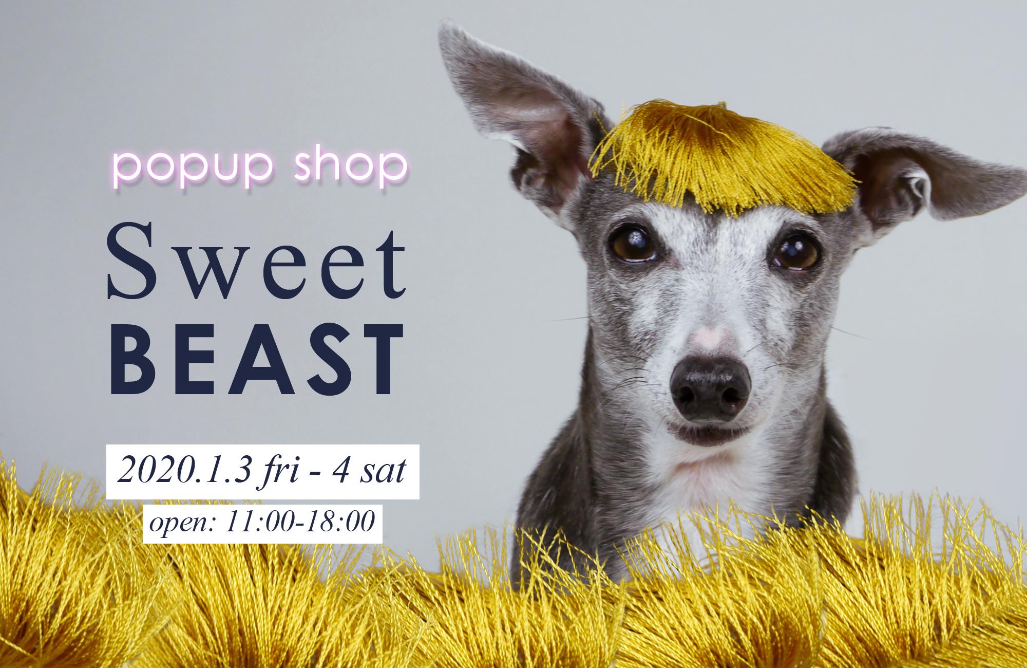 愛犬のためのポップアップショップ「Sweet BEAST」新春初売り in 山口県宇部市 / by イタグレ・ダーコ